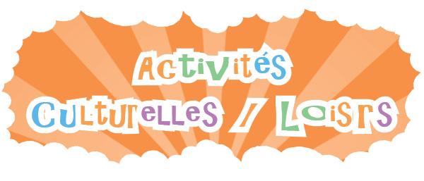 Activité 2015